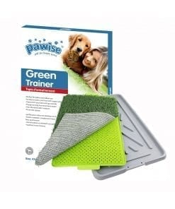 Pawise Green Trainer (43x68)cm