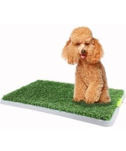 Pawise Green Trainer Replacement Grass Mat