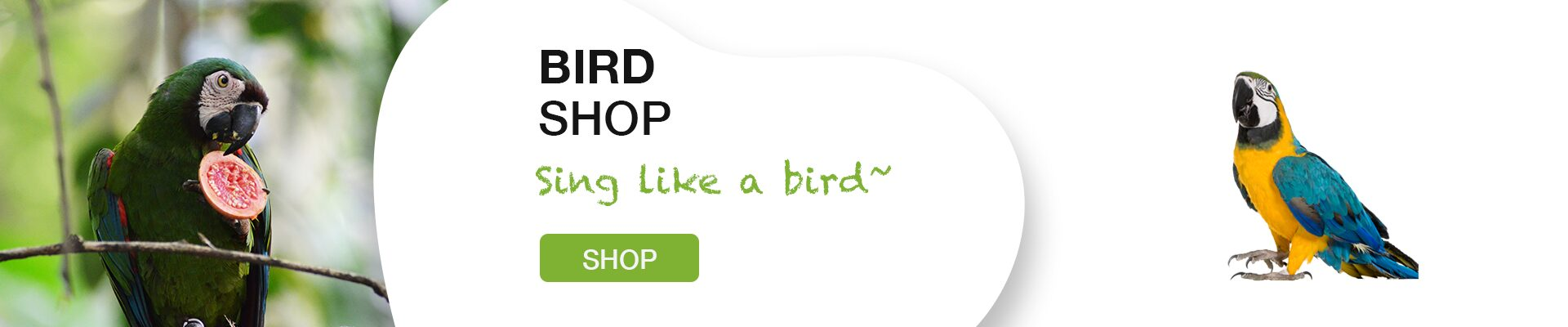 Shop for Bird Product