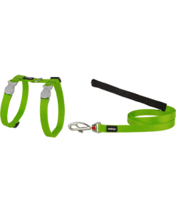 Red Dingo Cat Combo Classic - Harness & Lead - Lime Green