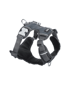 Red Dingo Padded Harness - Gray