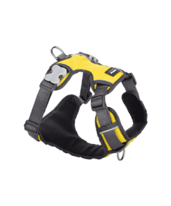 Red Dingo Padded Harness - Yellow