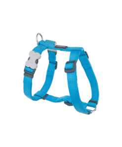 Red Dingo Classic Harness - Turquoise