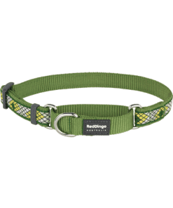 Red Dingo Martingale Collar Monty Green