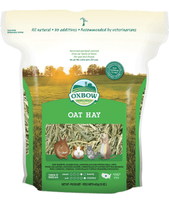 Oxbow Oat Hay for Small Animals 15oz