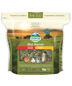 Oxbow Hay Blend - Timothy/Orchard for Small Animals